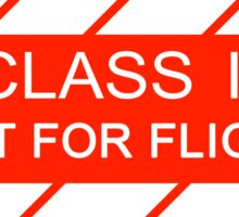 NASA - CLASS II Not For Flight Sticker