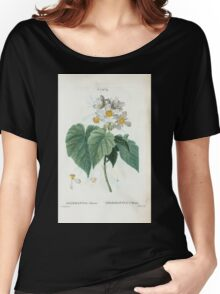 Traité des Arbres et Arbustes 0451 Sparmannia Africana Sparmannia d'Afrique Named for Dr Andreas Sparmann 19th century Swedish botanist who collected Women's Relaxed Fit T-Shirt