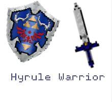 Hyrule Warrior  by Oliat221b