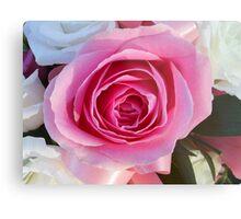 Pink Rose and Ribbon Metal Print