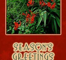 Season's Greetings Holiday Card - Crocosmia by MotherNature2