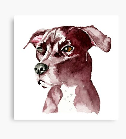 Monochromatic Pit Bull Dog Watercolor Painting Canvas Print