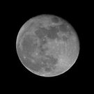 Moonlighting by Barrie Woodward