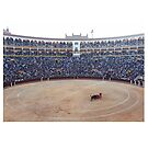 Spanish Bullfight by 45thAveArtCo