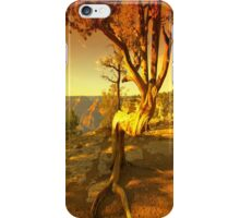 The Grand Ending iPhone Case/Skin