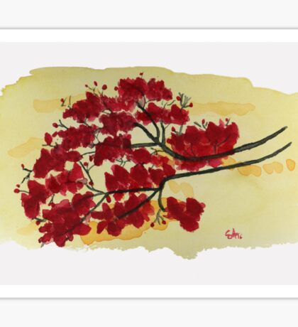 It's All About The Red  Watercolor Painting Art Print Fine Art Print from Watercolor Painting Watercolor Wall art Sticker