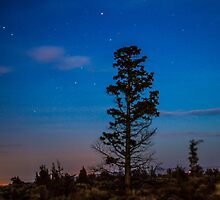 Night Scapes/Redmond by Richard Bozarth