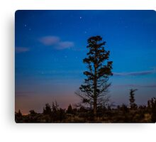 Night Scapes/Redmond Canvas Print