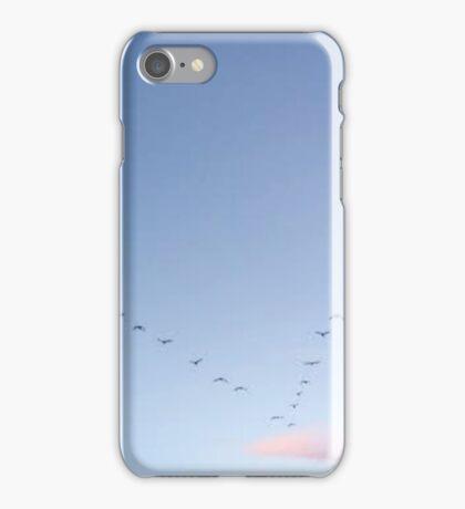 birds  iPhone Case/Skin