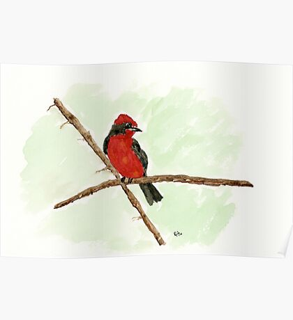A Little Red Bird. Original Watercolor Painting Art Print from Watercolor Painting Fine Art Print Watercolor Wall Art Poster