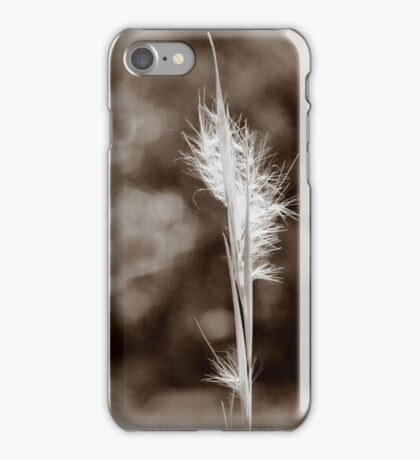 Weed in Tintype iPhone Case/Skin