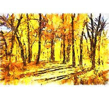 Abstract Fall Photographic Print