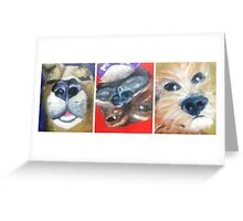3 Dogs Waking Greeting Card