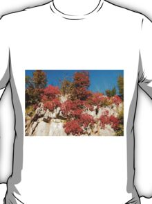 Autumn Colours in the Carso T-Shirt
