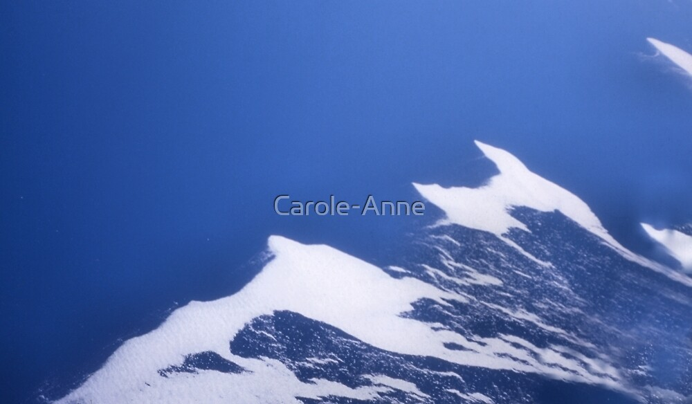 Antarctic Confluence by Carole-Anne