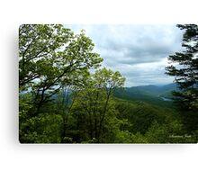 Fern Lake near Cumberland Gap Canvas Print