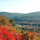Autumn Landscape Near Doberdo by jojobob