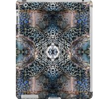 Blue Rocks iPad Case/Skin