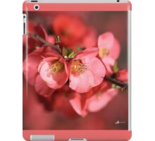 Flowering Quince iPad Case/Skin