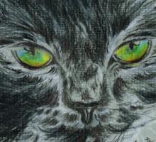 Wild Cat Sticker