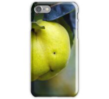 Yellow ripe quince on branch iPhone Case/Skin
