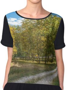 Road through forest Chiffon Top