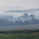 Smoky Hills by Liz Worth