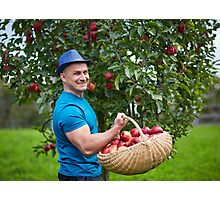 Farmer picking apples in a basket Photographic Print