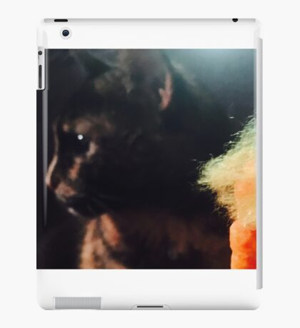 Pussies say no to Commander in Chief'to iPad Case/Skin