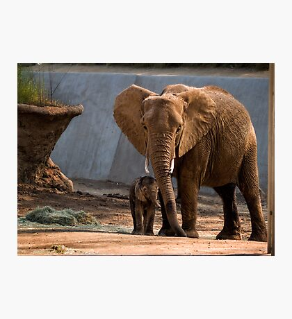 Mama Unngani and baby Photographic Print