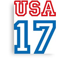 USA 17 Canvas Print