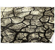 Parched Land - Clay Cracks and Nature Pattern Poster