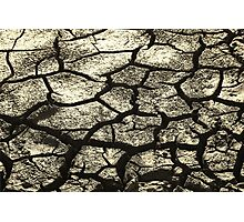 Parched Land - Clay Cracks and Nature Pattern Photographic Print