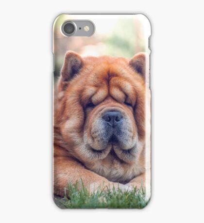 Chow portrait iPhone Case/Skin