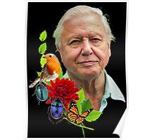 David Attenborough Poster