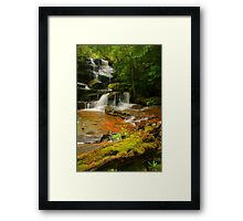 Somersby Falls .. Thanks to Wazza Framed Print