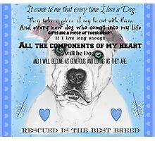Rescued is the best breed Photographic Print