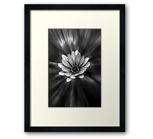 Black & White Flower Framed Print