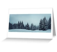 fir forest panorama Greeting Card
