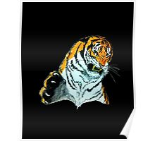 Tiger Clawing Poster