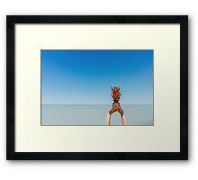 Tropical Pinapple Framed Print