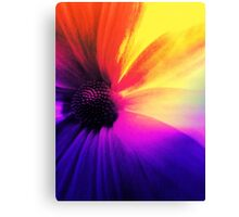Floral Infusion Canvas Print