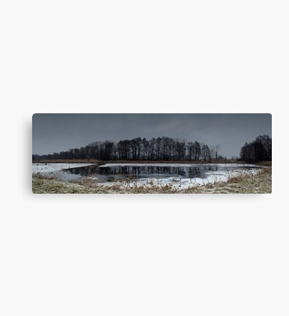 Winter landscape. The forest and the lake in snow. Evening time. Panorama photo Canvas Print