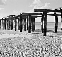 McKenzie's Jetty, Fraser Island by Janine Paris
