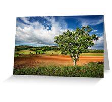 Walnut Tree Greeting Card