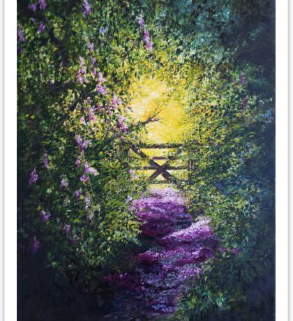 Petal strewn pathway, into the light.... Sticker