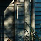 0291  Jenny's Garden by Hazel Hogarth