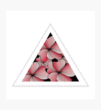 pink flowers in triangle Photographic Print