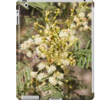 Black Wattle (Acacia mearnsi) iPad Case/Skin