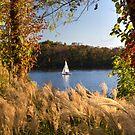 Sailing in the Potomac River by Bernai Velarde